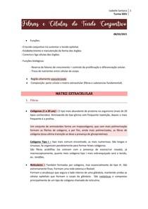 Fibras e Células do Tecido Conjuntivo