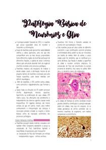 Fisiopato - Neuro
