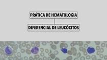 Hematologia Prática - Diferencial de Leucócitos com gabarito