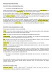 PRODUÇÃO PUBLICITÁRIA EM RÁDIO