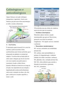 Colinérgicos e anticolinérgicos