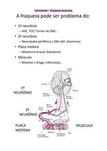 Miastenia Gravis e Dermatomiosite - Doenças musculoesqueléticas