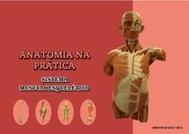 APOSTILA COMPLETA PARA ESTUDO DE ANATOMIA