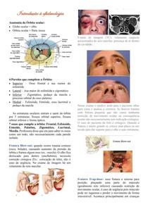 Introdução à oftalmologia - anatomia e patologias