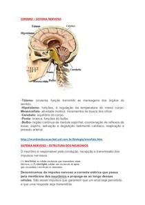 RESUMAO DE ANATOMIA - NP2