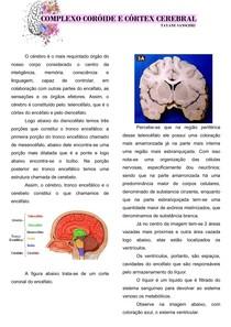 complexo coroide e cortex cerebral resumo 01