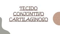TECIDO CONJUNTIVO - PARTE 2 e 3