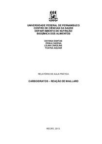Relatório de Reação de Maillard