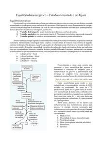 Equilíbrio bioenergético Estado alimentado e de Jejum