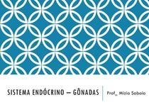 Aula - Sistema endócrino – gônadas.pdf