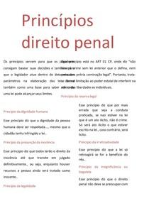 PRINCIPIOS DIREITO PENAL