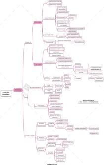 Mapa mental - Migrânea
