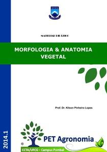 Apostila - Morfologia e Anatomia Vegetal - PET