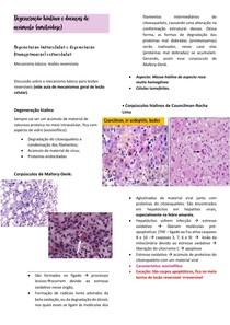 FISIOPATO- Aula 4- Degenerações hialina e transformações- resumo de literaturas