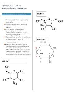 Resumo aula 2 metabolismo MESMO