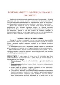DESENVOLVIMENTO DO OURIÇO-DO-MAR E DO ANFIOXO