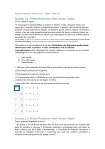 Prática Profissional Artes Visuais – Digital – Nota 100