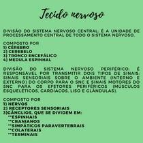 DIVISÃO SNC