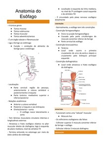 Cópia de Resumo de Anatomia do Esôfago