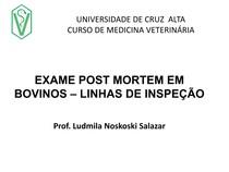 aula 2 INSPEÇÃO POST MORTEM LINHAS INSPEÇÃO bovino