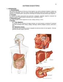 10.sistema_digestorio