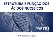 ESTRUTURA E FUNÇÃO DOS ÁCIDOS NUCLEICOS PARTE I