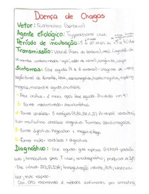 Doença de Chagas - Resumo