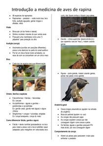 Introdução a medicina de aves de rapina