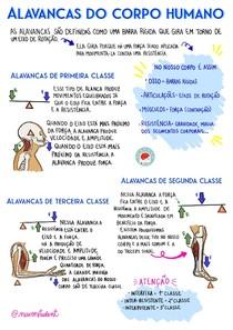 MAPA MENTAL - ALAVANCAS