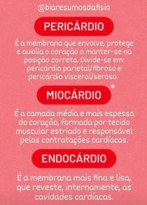Paredes Cardíacas / Túnicas Cardíacas / Coração - @biaresumosdafisio
