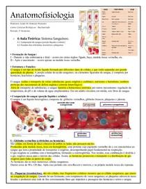 ANATOMOFISIOLOGIA   Sistema Sanguíneo
