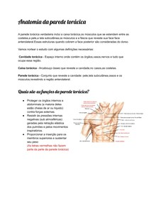 Anatomia da parede torácica