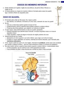 OSSOS E ARTICULAÇÕES DO MEMBRO INFERIOR