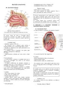 Revisão Anatômica - Cabeça e Pescoço