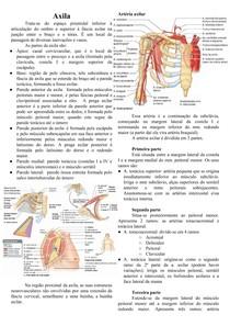 Anatomia da Axila e Plexo Cervical e Braquial