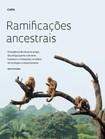 Ramificacoes_ancestrais_macacos_prego_FAPESP2012
