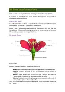 Série Botânica flores