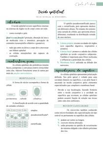 Tecido Epitelial (características e especializações da superfície) - Histologia