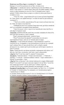 Membranas encefálicas, liquor e vascularização - Anato 2