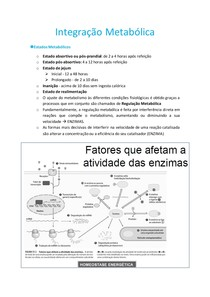 12. Integração Metabólica