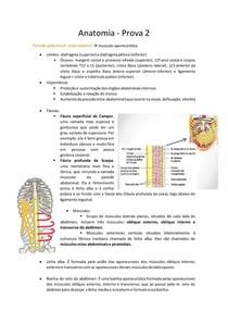 Anatomia - prova 2