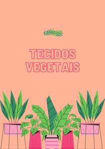 Apresentação | Tecidos vegetais