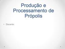 01 Produção Própolis APF