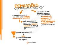 Reuniões e comissões parlamentares - Mapa Mental