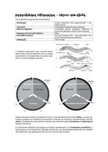 Parasitologia Veterinária: Nematódeos