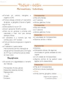6 Macronutrientes - Carboidratos