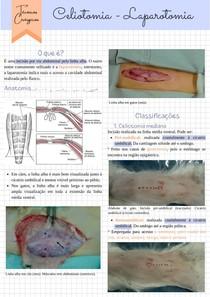 Celiotomia/Laparotomia - Técnicas Cirúrgicas