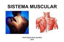 SISTEMA-MUSCULAR-2014.pdf
