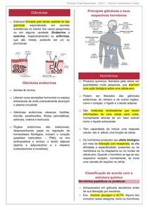 Resumo metabolismo I