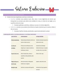 Sistema Endócrino - Resumo Tortora